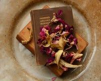 духовность еды Стоковое фото RF