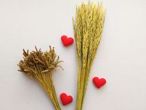 Ухо риса и знака показывая сердце вышило красной влюбленности писем Стоковые Фото