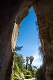 Ухо Dinoysos - пещера известняка стоковое изображение rf