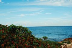 дух моря ветрила приключения вниз Стоковое Изображение RF
