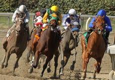 Участвовать в гонке вокруг далеко поворота Стоковое Изображение