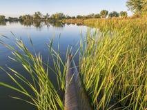 Участвовать в гонке каяк на озере Стоковая Фотография