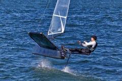 Участвовать в гонке на гавани Сиднея стоковое изображение