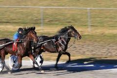 участвовать в гонке проводки Стоковая Фотография RF