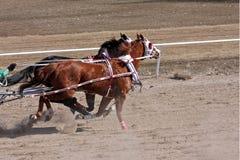 Участвовать в гонке Chariot Стоковые Изображения RF