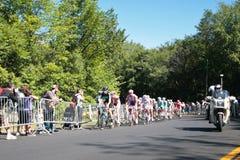 Участвовать в гонке Peloton Стоковые Фотографии RF