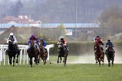 участвовать в гонке prague лошади Стоковые Изображения RF