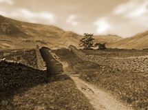участки земли cepia landscape тон yorkshire Стоковое фото RF