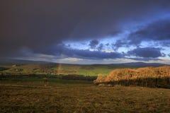 Участки земли Йоркшира стоковые фотографии rf
