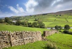 Участки земли Йоркшира, Swaledale, Англия стоковое изображение rf