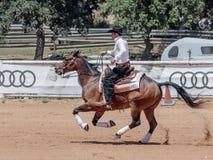 Участники в конноспортивных конкуренциях выполняют на ферме лошади Стоковые Изображения RF