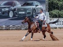 Участники в конноспортивных конкуренциях выполняют на ферме лошади Стоковое Изображение RF