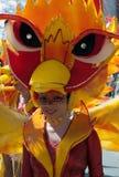 Участник carnival-10 стоковое изображение