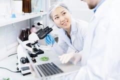 Ученые обсуждая данные полученные от микроскопического исследования Стоковое фото RF