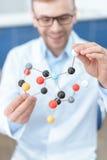 Ученый в пальто лаборатории держа молекулярную модель Стоковое Фото