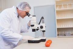 Ученый еды смотря через микроскоп стоковое фото rf