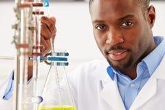 Ученый изучая жидкость в склянке стоковая фотография