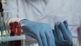 Ученый лаборатории проводя исследование медицинское исследование на пробах крови, создавая вакцину сток-видео