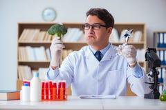 Ученый доктора получая приз для его открытия исследования Стоковые Изображения