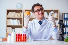 Ученый доктора получая приз для его открытия исследования Стоковая Фотография RF