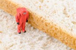 Ученый проверяя бактерии на хлебе Стоковые Изображения