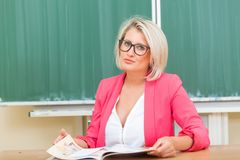 Учитель в классе Стоковое Изображение RF