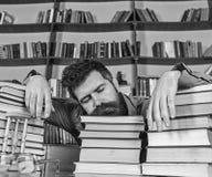 Учитель или студент с бородой падают уснувший на книгах, defocused Концепция Overstudied Человек на положении стороны спать  стоковое изображение rf