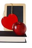 учитель яблока Стоковые Изображения RF