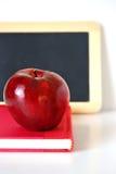 учитель яблока Стоковая Фотография