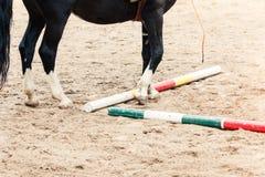 Учить верховую езду Инструктор учит предназначенному для подростков Equestrian стоковые изображения