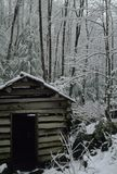 ушат снежка стана Стоковая Фотография RF