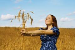 уши пачки держа женщину пшеницы Стоковые Фотографии RF