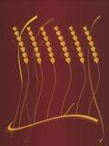 уши предпосылки vector пшеница Стоковая Фотография