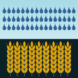 Уши пшеницы в дожде Культивирование зерна иллюстрация вектора