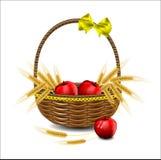 Уши пшеницы и красные яблоки Стоковая Фотография RF