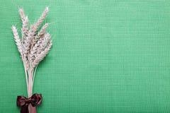 Уши пшеницы на зеленом цвете. Стоковое Изображение RF