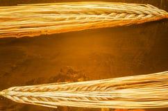 Уши пшеницы на предпосылке золота Стоковое Изображение RF