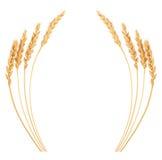 Уши пшеницы Рамка иллюстрация штока