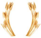 Уши пшеницы Рамка стоковое фото rf