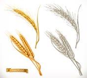 Уши пшеницы стили реализма 3d и гравировки вектор иллюстрация вектора