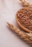 3 уш пшеницы и деревянной ложки с corns дальше Стоковые Изображения RF