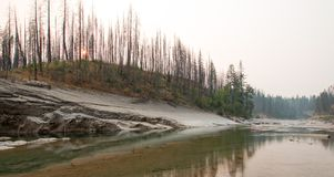 Ущелье заводи луга на южной вилке Flathead реки в районе дикой природы Bob Marshall в Монтане США Стоковое Фото