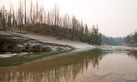 Ущелье заводи луга на южной вилке Flathead реки в районе дикой природы Bob Marshall в Монтане США Стоковые Фотографии RF