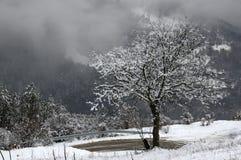 Ущелье реки Iskar, около Svoge, Болгария - изображение зимы Стоковое Изображение RF
