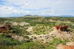 Ущелье Olduvai, Танзания стоковые фото