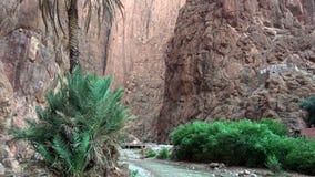Ущелье Todgha, каньон в высоких горах атласа в Марокко стоковая фотография rf
