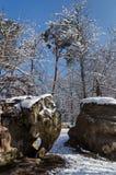 Ущелья Apremont под снегом в лесе Фонтенбло стоковое фото