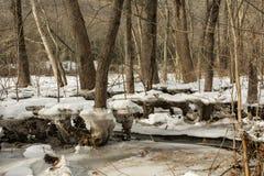 Ущерб от наводнения от варенья льда Стоковое Изображение