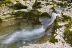 Ущелье в абхазии Стоковое Фото