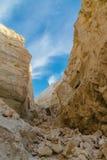 Ущелье горы в пустыне горы Стоковые Фото